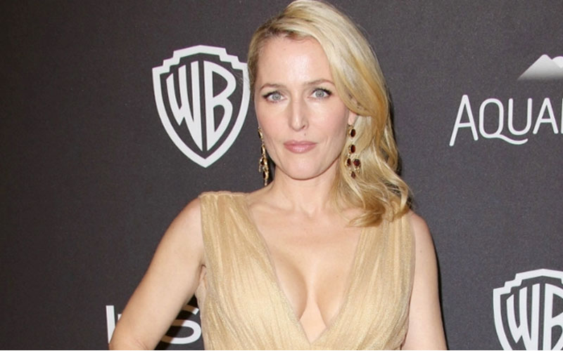 chatter.lkamerican-gods-casting-new-media-role-to-replace-gillian-anderson